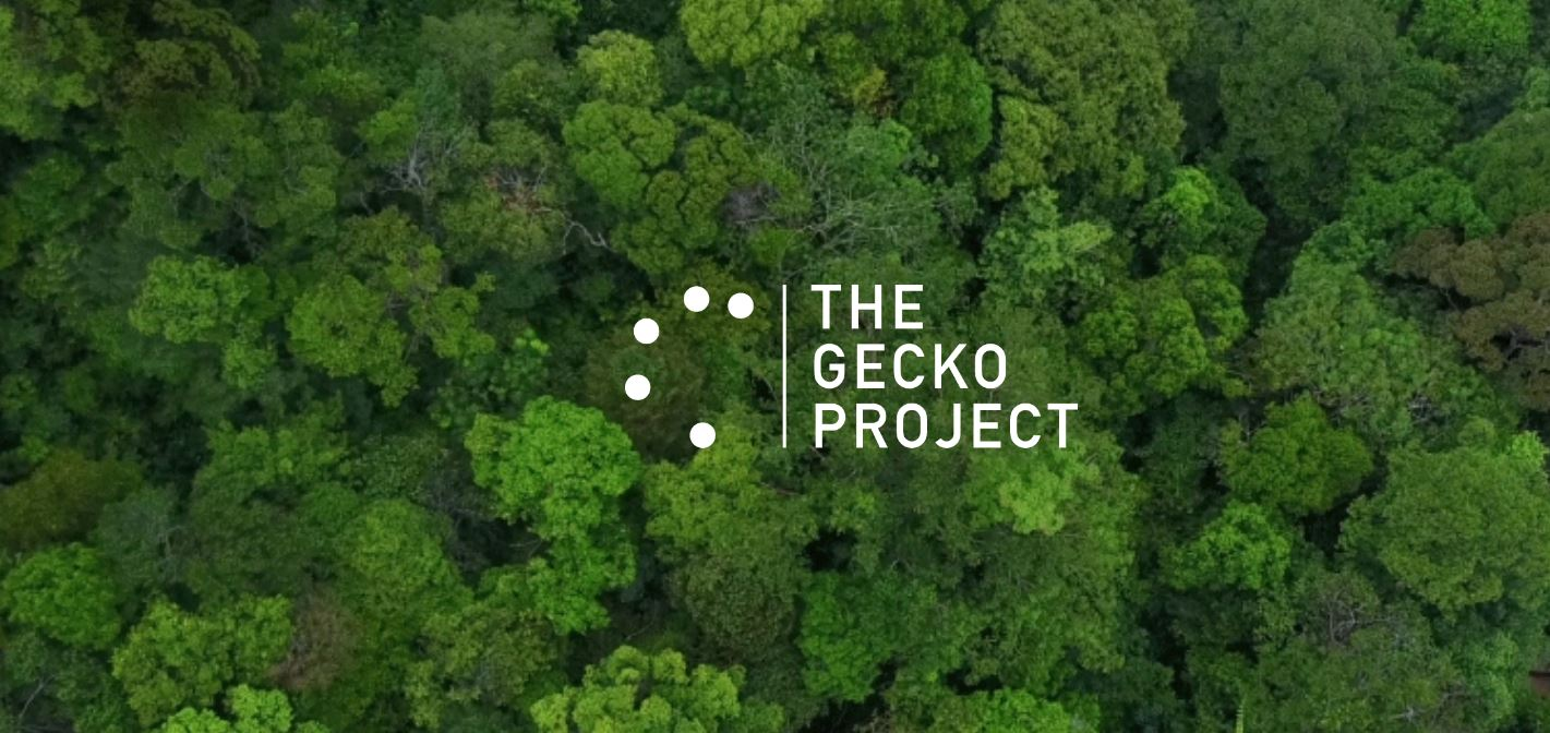earthsight gecko project